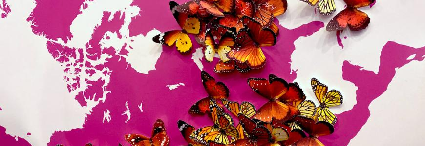 Image of paper butterflies pinned to a map to represent origins and migration